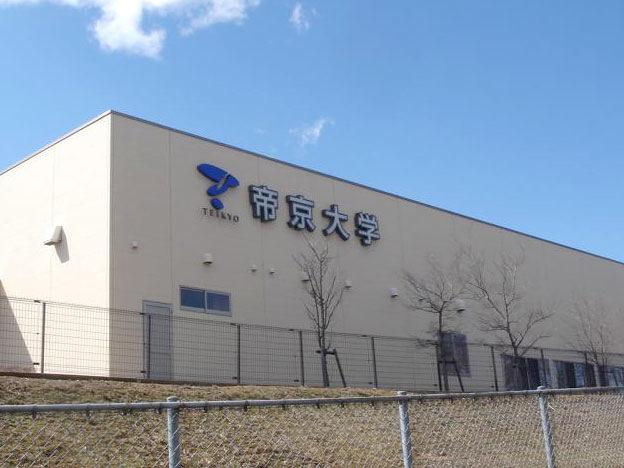 柔道整復師の他に経営学やバイオサイエンスも学べる帝京大学