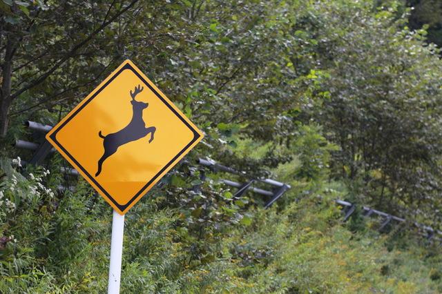 珍しい道路標識