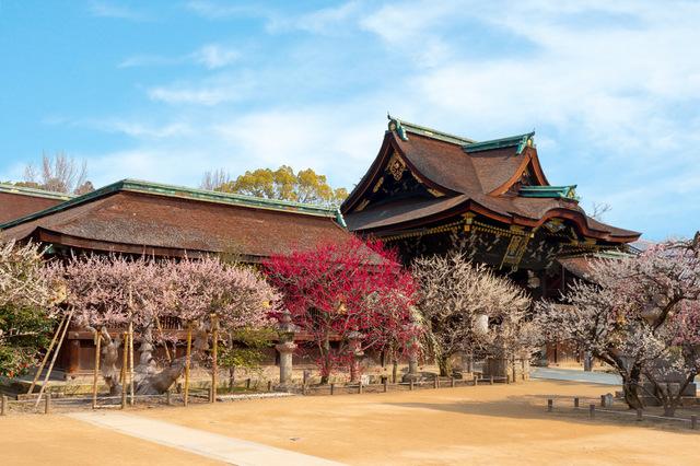 京都観光の中心。街歩きも文化・芸術も食も集まる「洛中・洛東エリア」