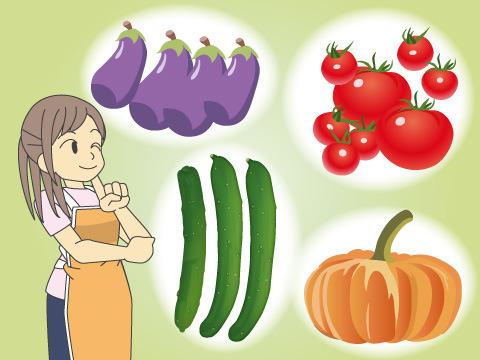 夏が旬の野菜