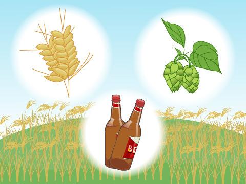 ビールに使う原料について