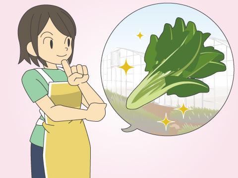 サンプラザの収穫体験フェア