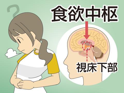 食欲不振の原因と対策
