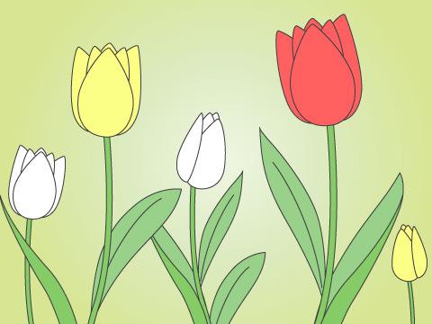 チューリップ(開花時期:3~4月)