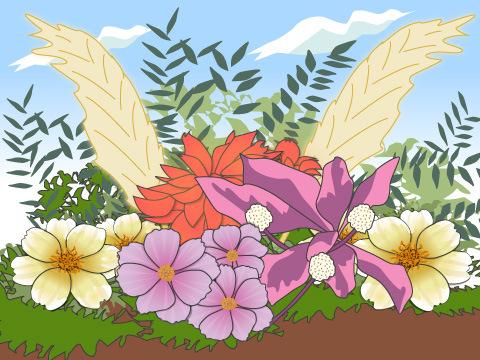 秋のガーデンの花の組み合わせ方