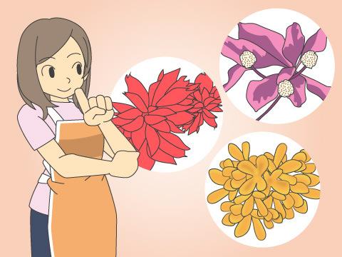 秋に開花する花