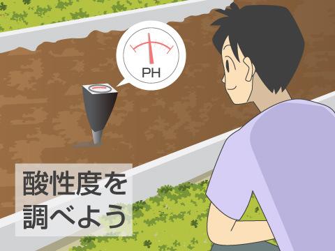 植物に適した土作り