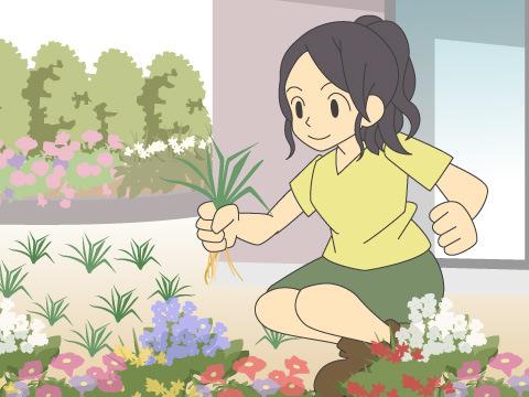 除草の処理作業
