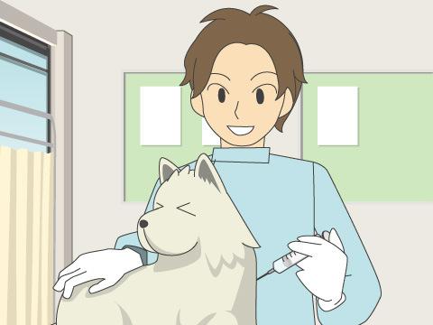 生後3ヵ月までに狂犬病の予防接種を