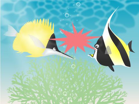 他の魚との混泳は相性が大切