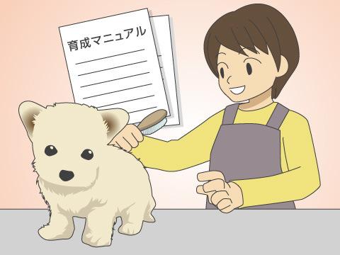 ミックス犬の飼育にあたって知っておきたいこと