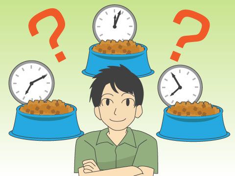 食事は1日に何回?