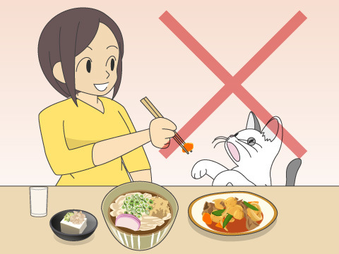 人の食べ物は与えない