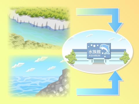 海や川から直接確保