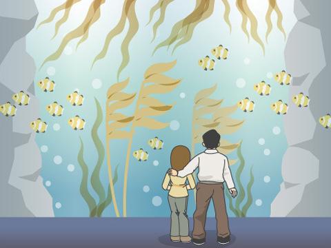 海中を再現した施設で、生き物の自然な姿を観察
