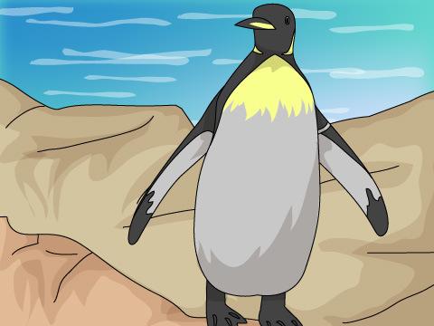 ペンギンの生態を学ぼう