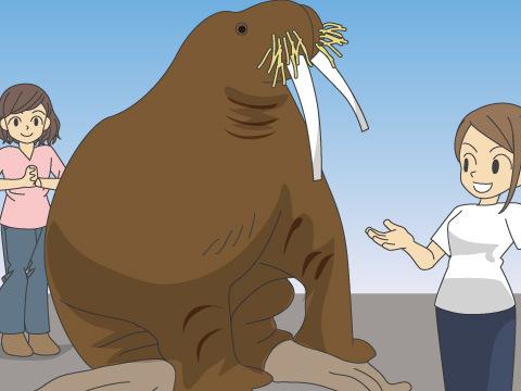 動物とのコミュニケーションが楽しい