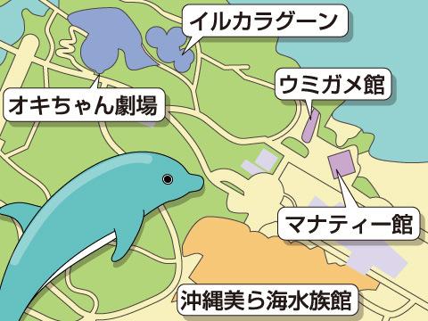 水族館周辺の無料施設も見学しよう