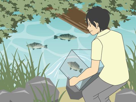 生態系を脅かす危険な魚