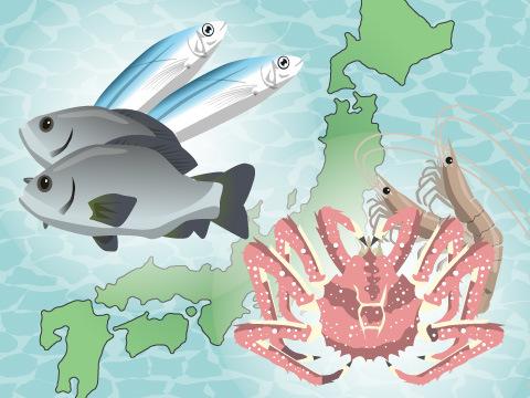 日本周辺の海の実像
