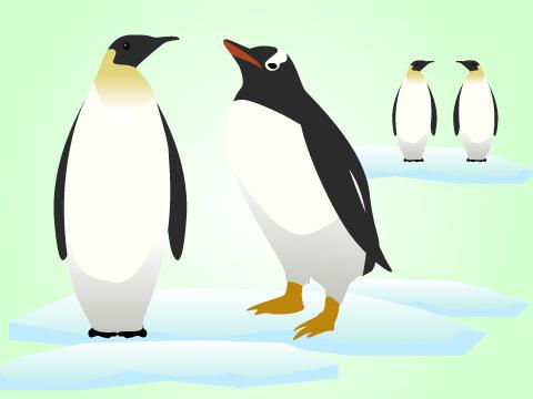 南極オキアミを観察しよう