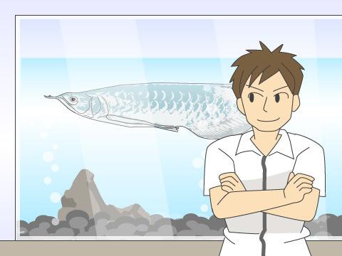 魚の組み合わせに注意