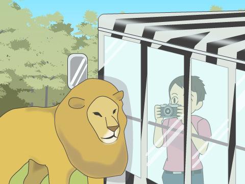 ≪コレ!知っておこう≫「サファリパーク」のルーツは日本にあった