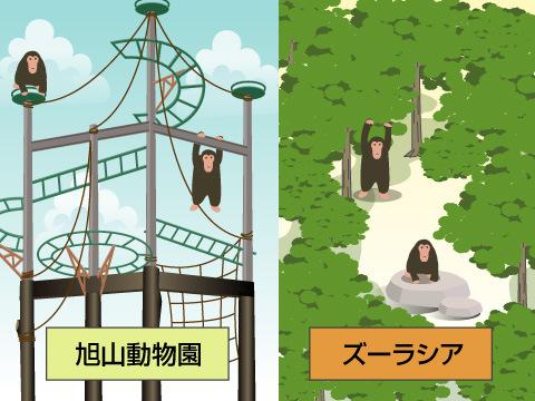知って行くとなぜ楽しいか? 2つの「チンパンジーの森」を例に