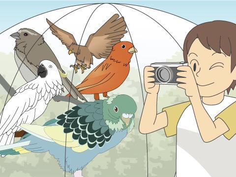とくしま動物園(徳島県)