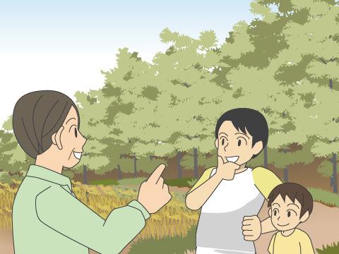 平戸市 たびら昆虫自然園(長崎県)