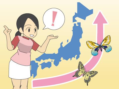 丸瀬布昆虫生態館(北海道)