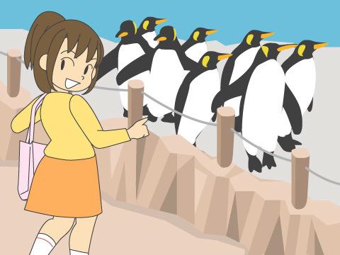 ペンギン舎では飼育施設内に入っての観覧が可能