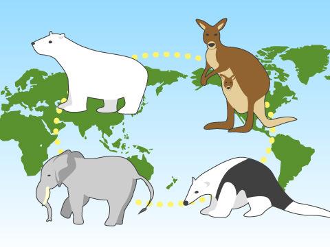 """「生息環境展示」による""""世界一周""""の動物旅行に出かけよう"""