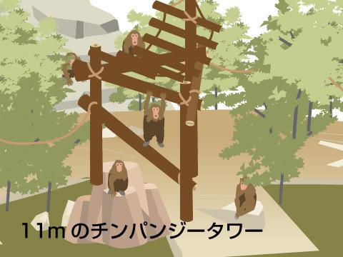 チンパンジーたちの能力を再認識