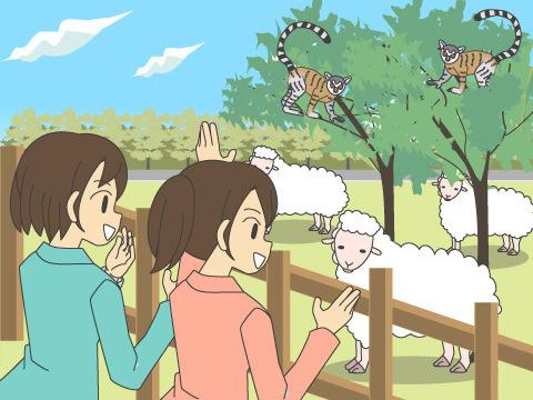 飼育数日本一のフラミンゴ展示は圧巻