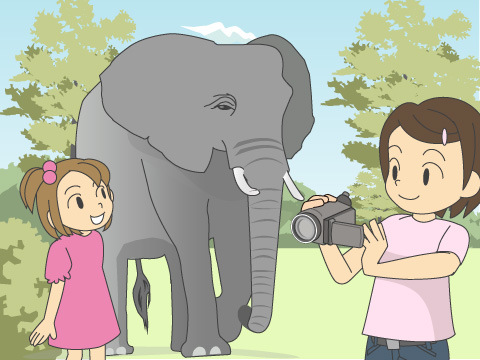 アジアゾウ「みどり」とお散歩