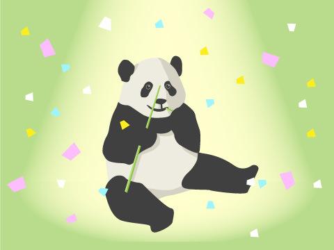 不動の人気№1アイドル「ジャイアントパンダ」