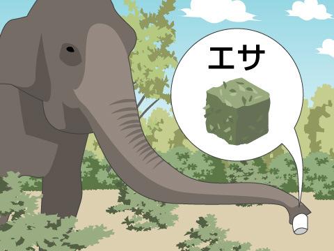 ≪例≫名古屋市東山動物園「アフリカゾウの餌やりの工夫」