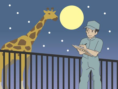 実は、魅力いっぱいの動物園の夜