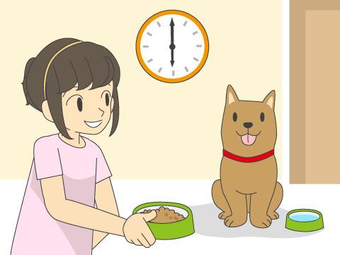 消化器の健康は適正な食事から