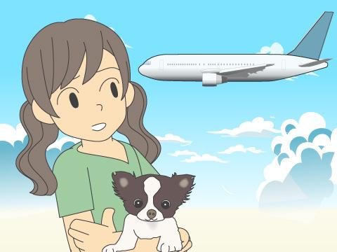 飛行機に乗れないワンちゃんたち