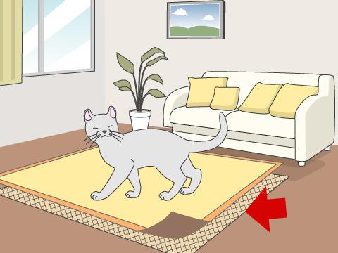 滑りにくい床を安全仕様にする
