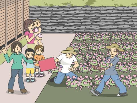 植物の知識、楽しさを広げる