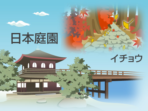 小石川植物の見所いろいろ!