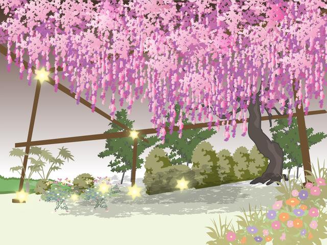 光の花が咲く!冬のイルミネーション