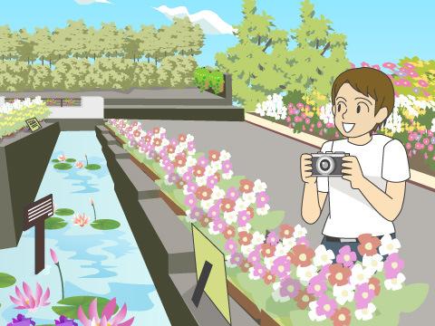 生きた植物を見せる植物園