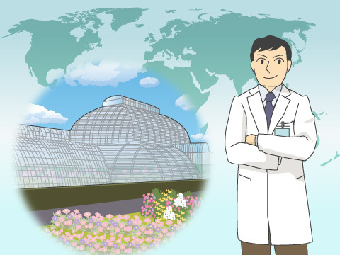 植物園自然保護国際機構の成り立ち