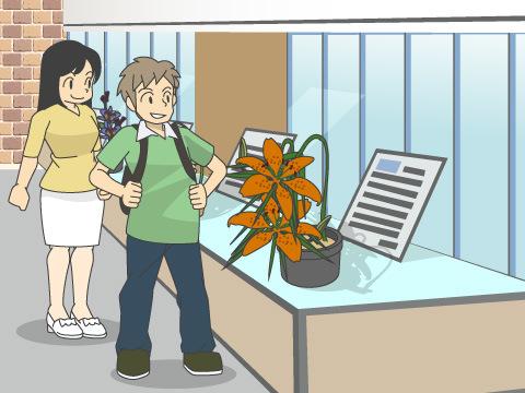 植物園自然保護国際機構の活動