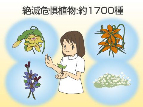 日本においても植物保全が重要に