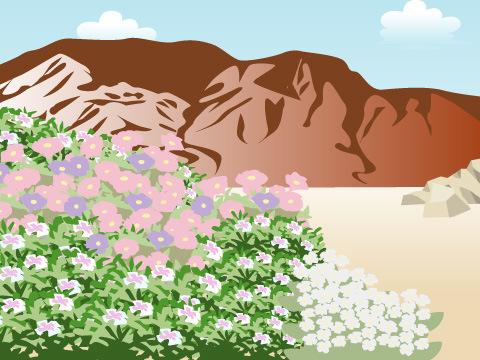 高山植物の生息する場所